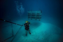 dive_team_wwii_remains